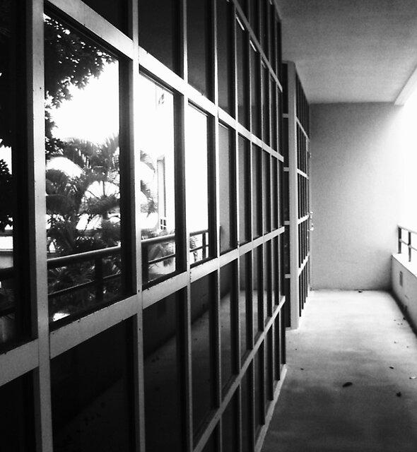 Hospital windows by Diana Forgione