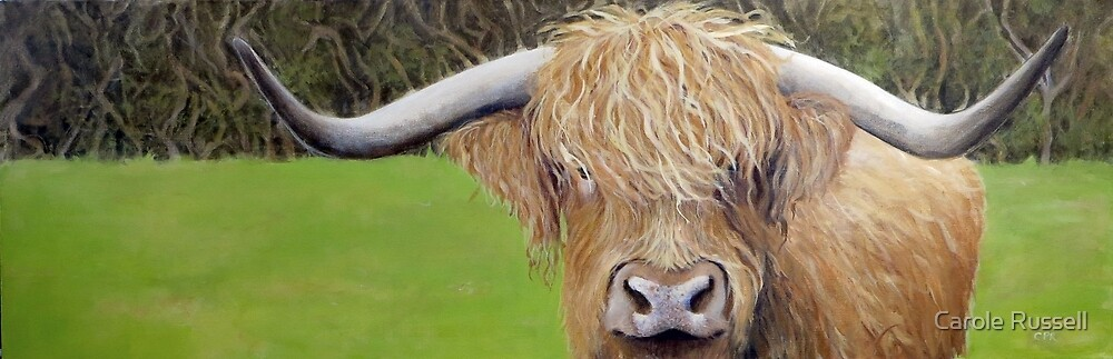 Hamish the Highland Coo by Carole Russell
