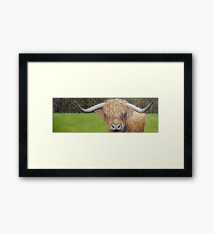 Hamish the Highland Coo Framed Print