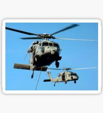 MH-60S Sea Hawk helicopters in flight. Sticker