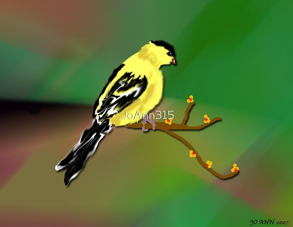 Gold Finch by JoAnn315