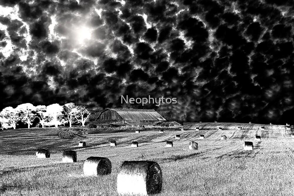 L / P  Also... by Neophytos