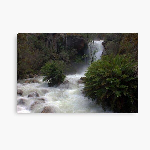Ladies Bath Falls, Eurobin Creek Canvas Print