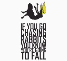 Dont go chasing rabbits