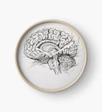 Brain Clock