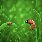 Ladybug and Chameleon by vladstudio