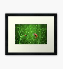 Ladybug and Chameleon Framed Print