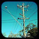 Kookaburra Street by jemimalovesbigted