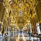 Opera House, Paris 5 by John Velocci