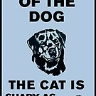 Beware of the dog – The cat is shady as hell also by #PoptART products from Poptart.me