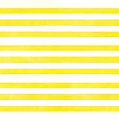 Striped Yellow by rupydetequila