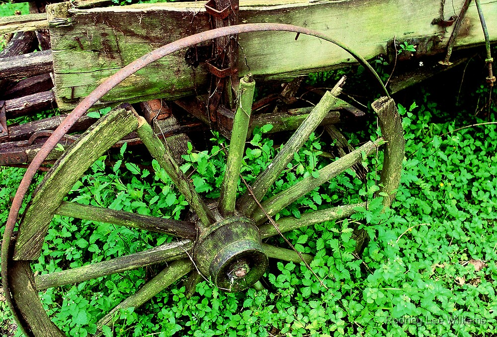 Wagon in the Green by Rodney Lee Williams