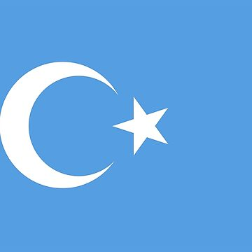 Turkistan, Turkistan Flag, Flag of East Turkistan, Pure & Simple by TOMSREDBUBBLE