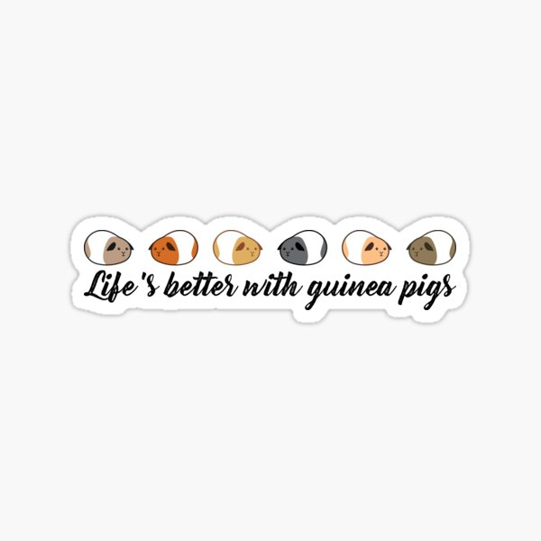 Life's better with guinea pigs Sticker