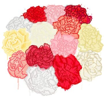 Colourful Carnations -  Watercolour by EloisaRelish