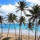 Bottom Bay Barbados by WanderingBajans