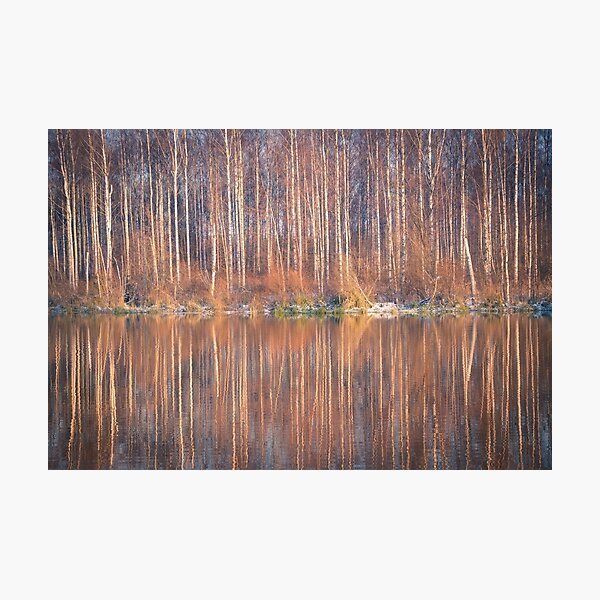 Mirror In The Lake Photographic Print