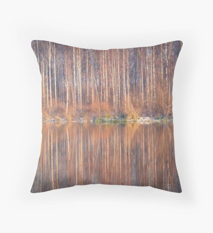 Mirror In The Lake Throw Pillow
