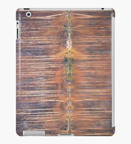 Mirror In The Lake iPad Case/Skin