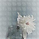 Vintage Peony on the Table by Sherry Hallemeier