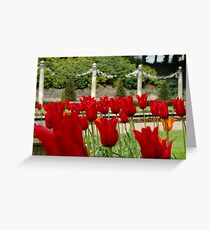 Compton Acres 3 Greeting Card