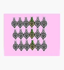 Pretty Pineapples  Photographic Print
