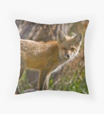 Rasberry Throw Pillow