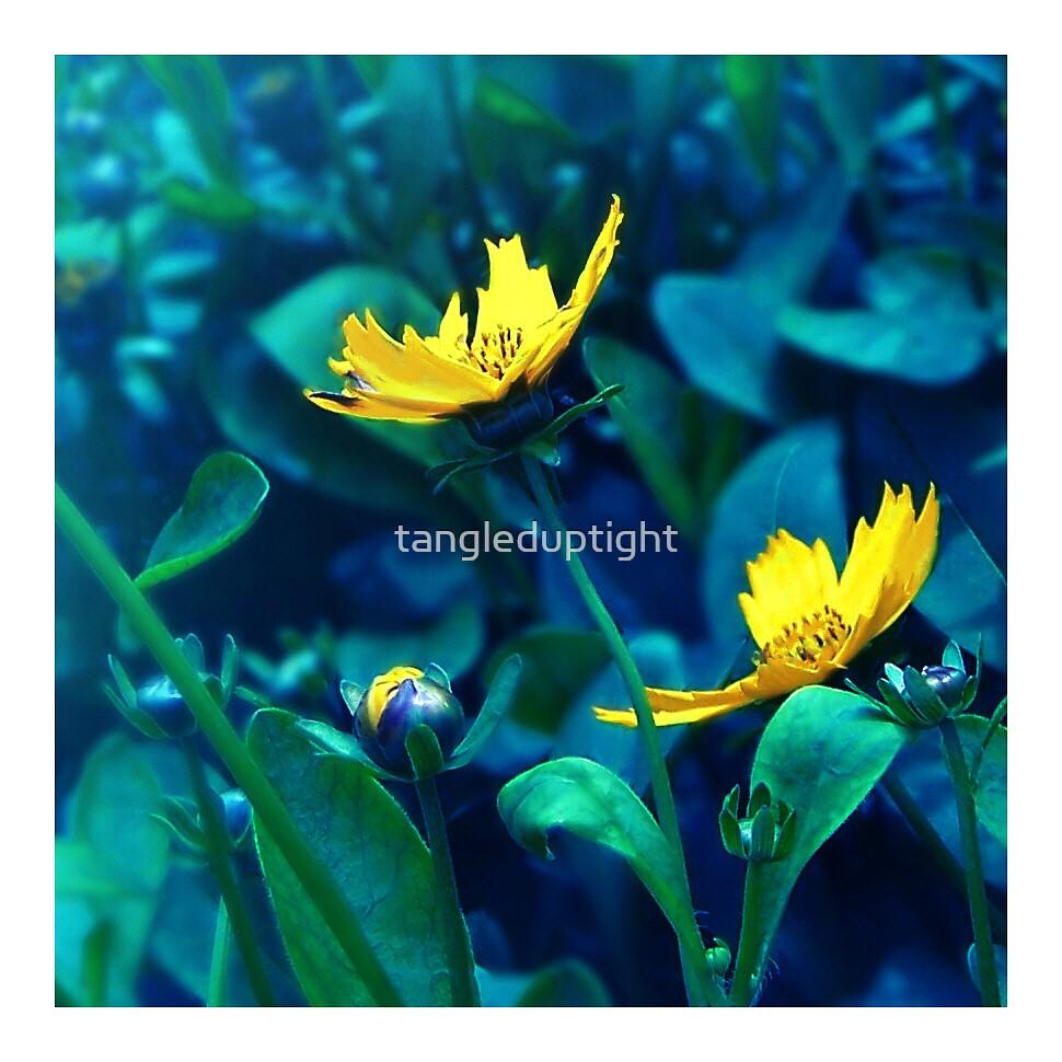 night lights by tangleduptight