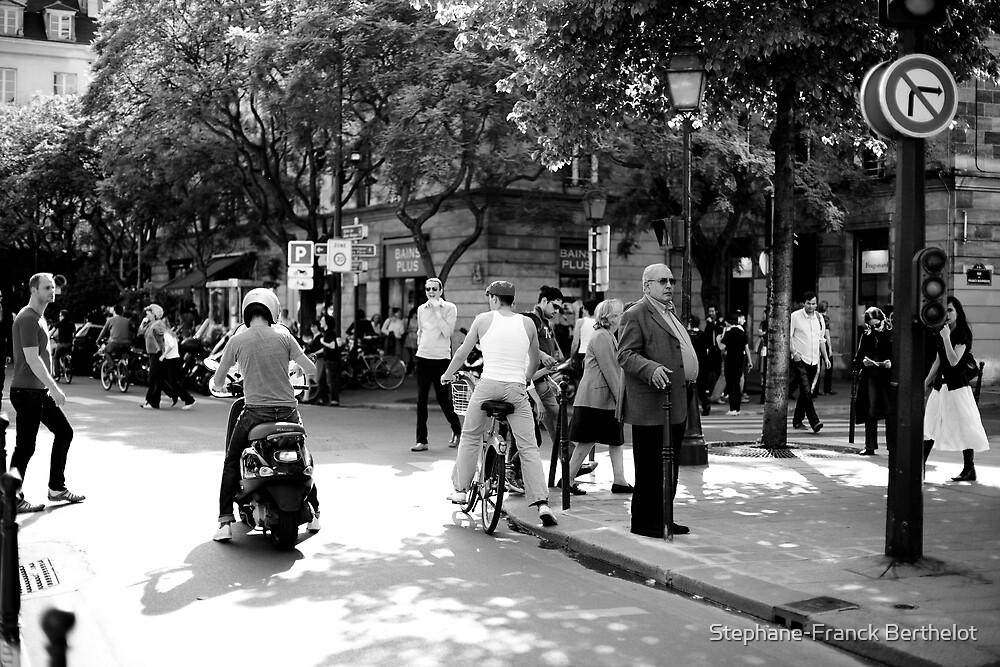 Paris in may by Stephane-Franck Berthelot