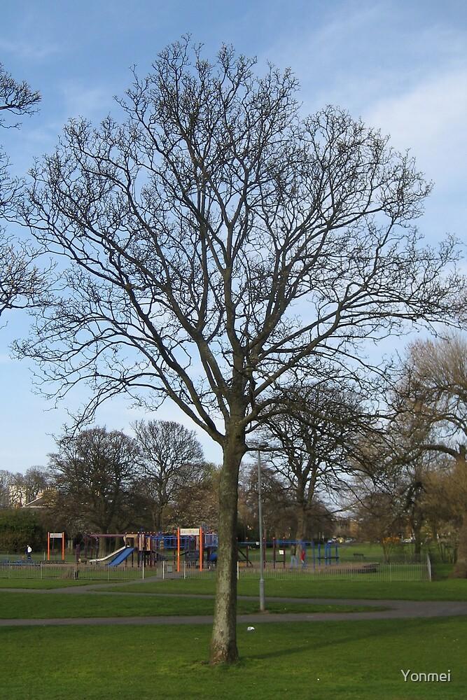 Tree in April, 2 by Yonmei