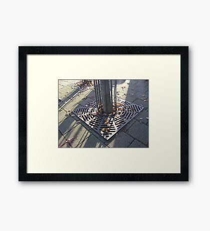 Autumn Carousel (leaves in radial grille, Burntisland) Framed Print