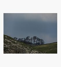 rolling hills  Photographic Print