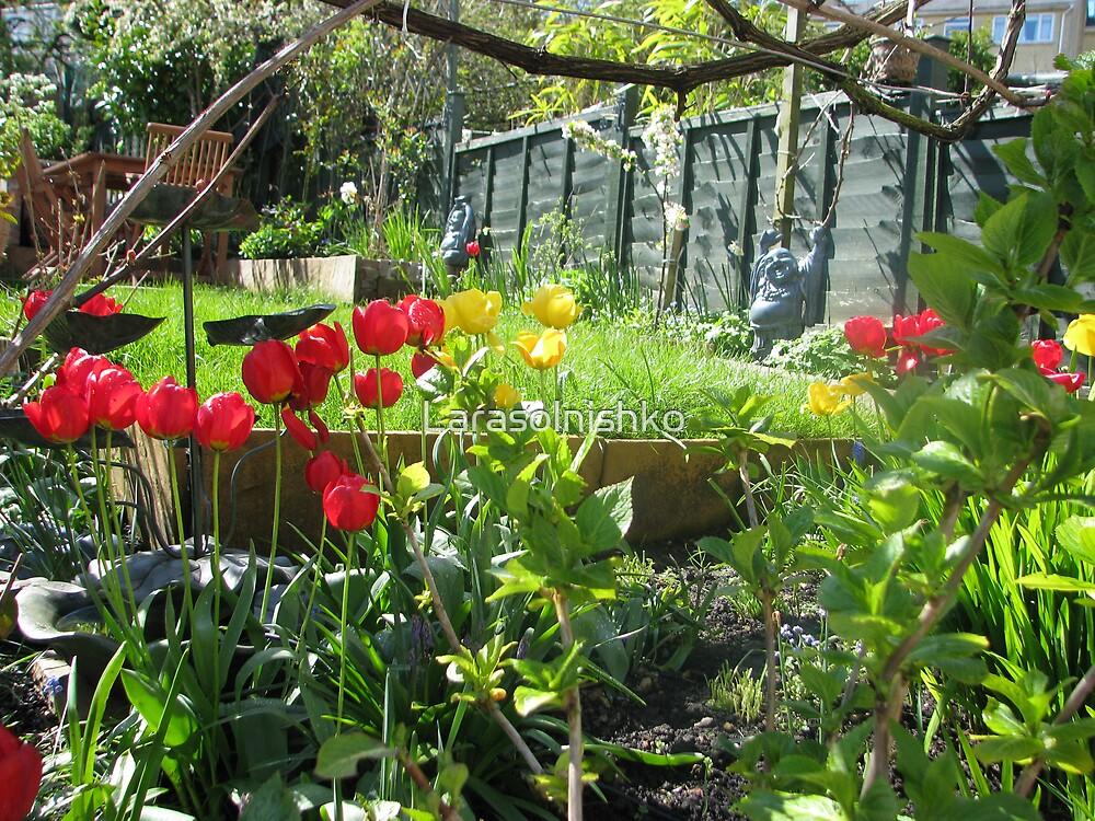 My garden by Larasolnishko