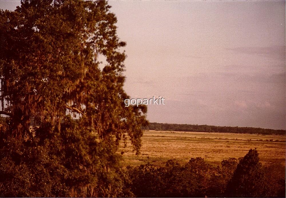 Paynes Praoroe Eastern View by goparkit