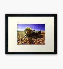 Jak in the Desert 2 Framed Print