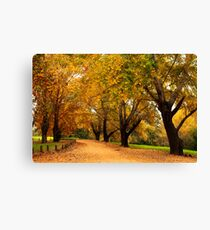 Bega during autumn Canvas Print