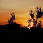 Winter Sunrise - Kakadu National Park by Lexa Harpell