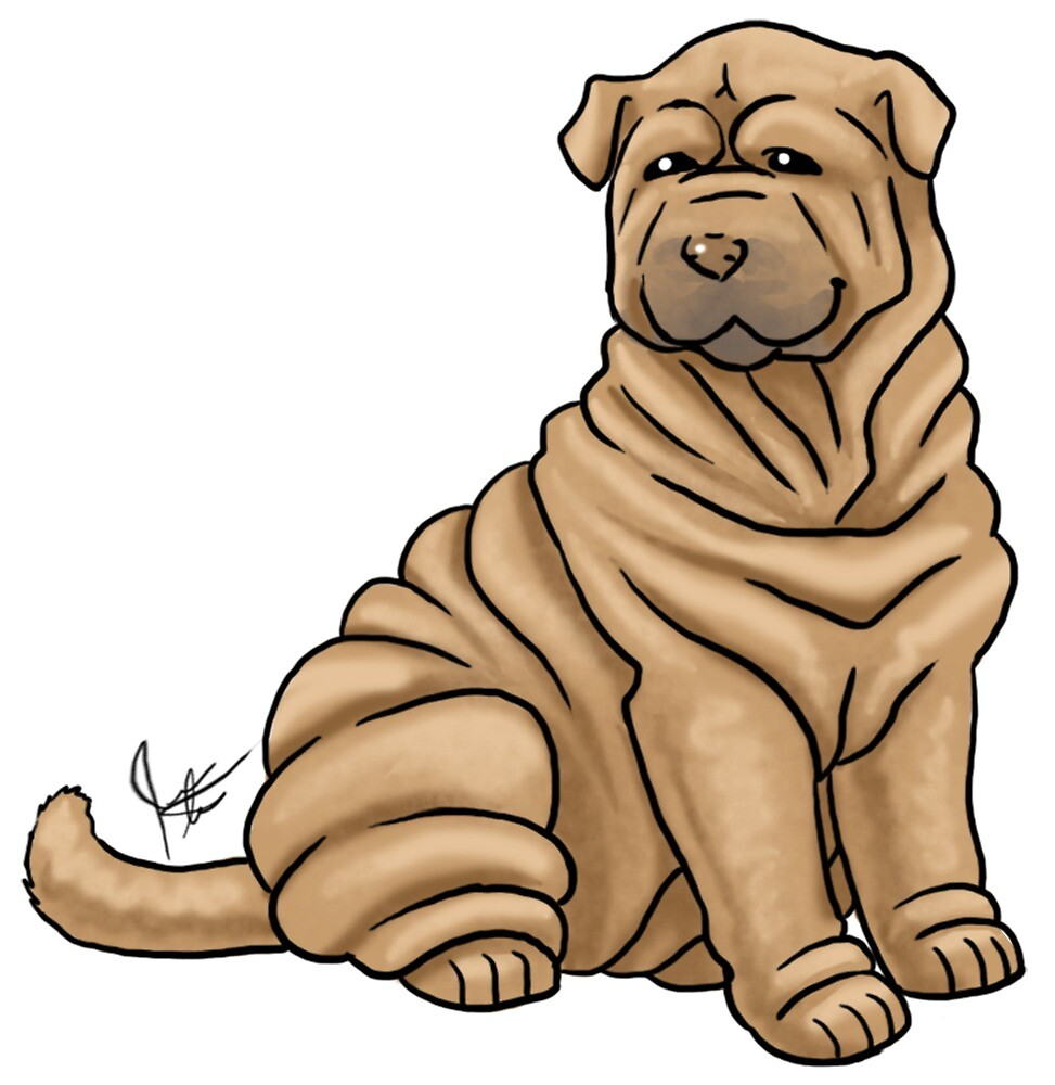 Chinese Shar Pei by Jennifer Stolzer