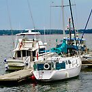Boats in Charlottetown Harbour, Prince Edward Island, Canada by Shulie1