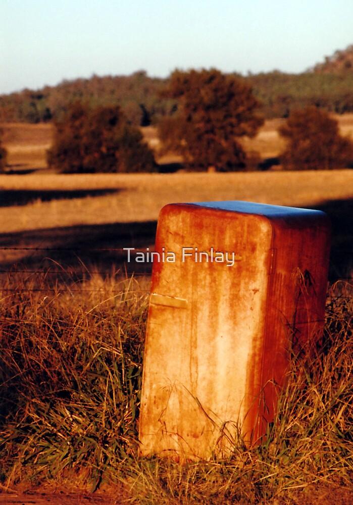 Australian Post Box by Tainia Finlay