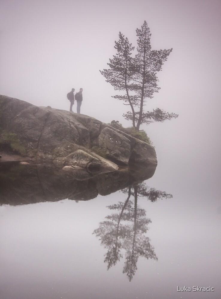 Norwegian reflection by Luka Skracic