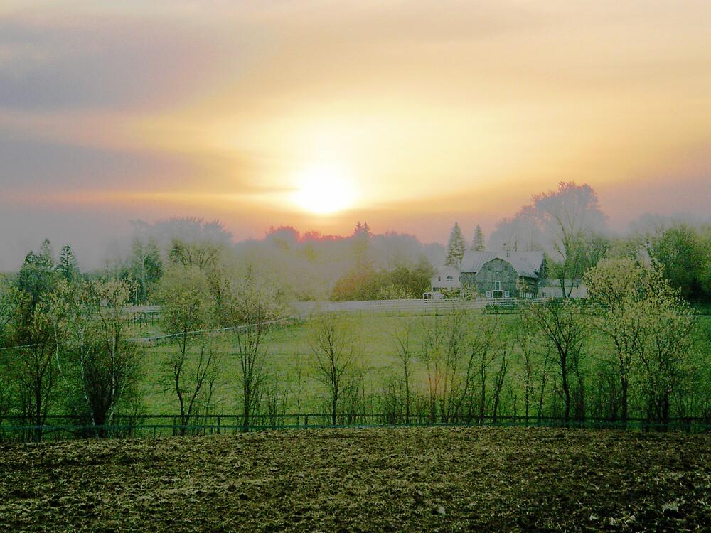 Country Dreams by marchello
