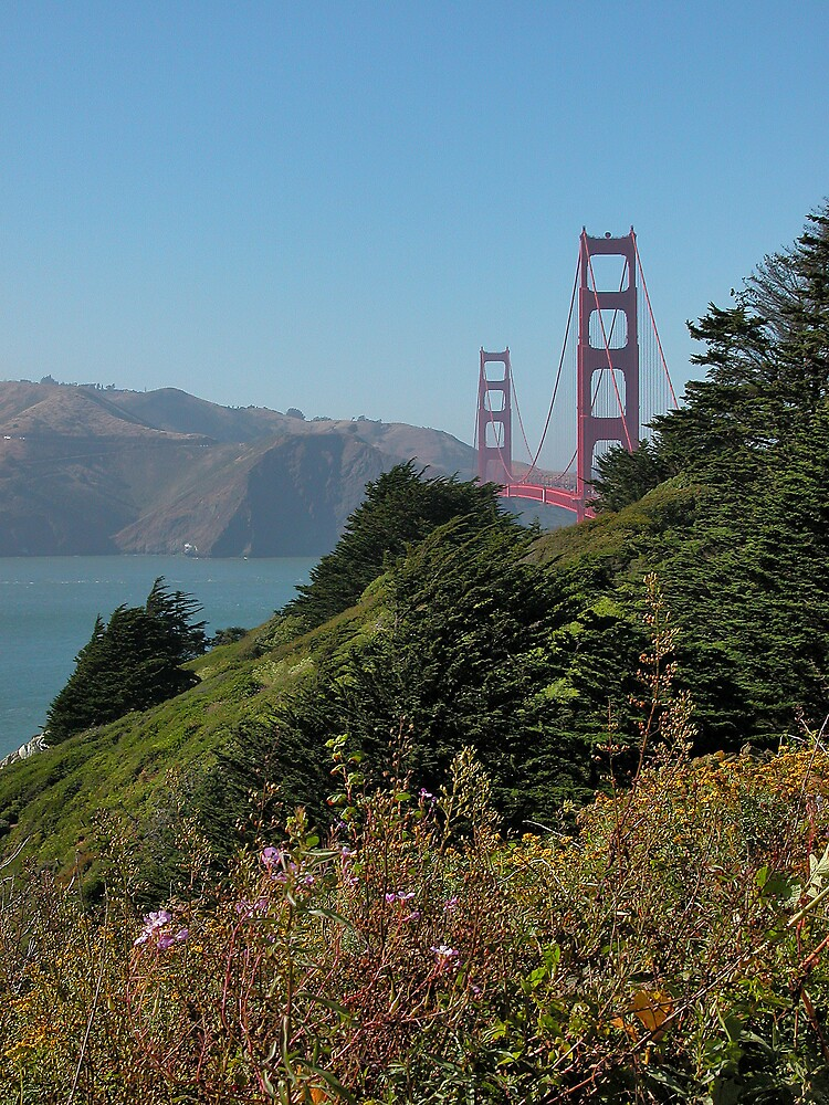 Golden Gate from the Park by Wilson Wyatt  Photography