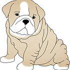 Bulldog Puppy by coleenross