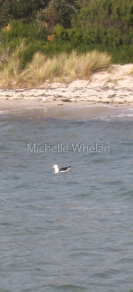 the swimmer by Michelle Whelan
