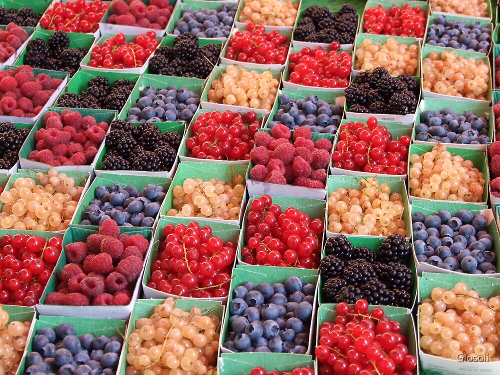 Berries by Glosoli
