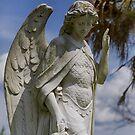 Guardian Angel by ishotit4u