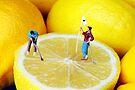 Golf Game On Lemons by Paul Ge