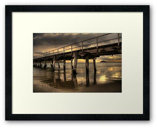 Golden Causeway by Steve Chapple