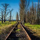 Wonky Tracks Panorama by Daniel Berends